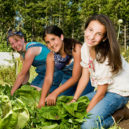 Volunteer Forever - Volunteer Farming and Agriculture Projects