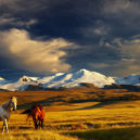 Volunteer Forever - Volunteer in Mongolia