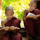 Volunteer Forever - Volunteer, Intern and Teach English in Laos